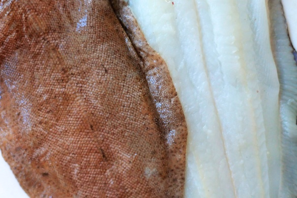 Lemon Sole
